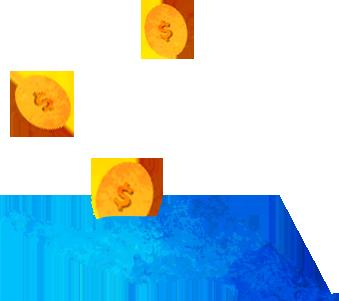 Portage - Donation