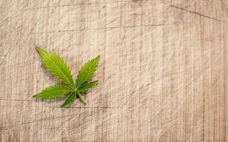 légalisation cannabis